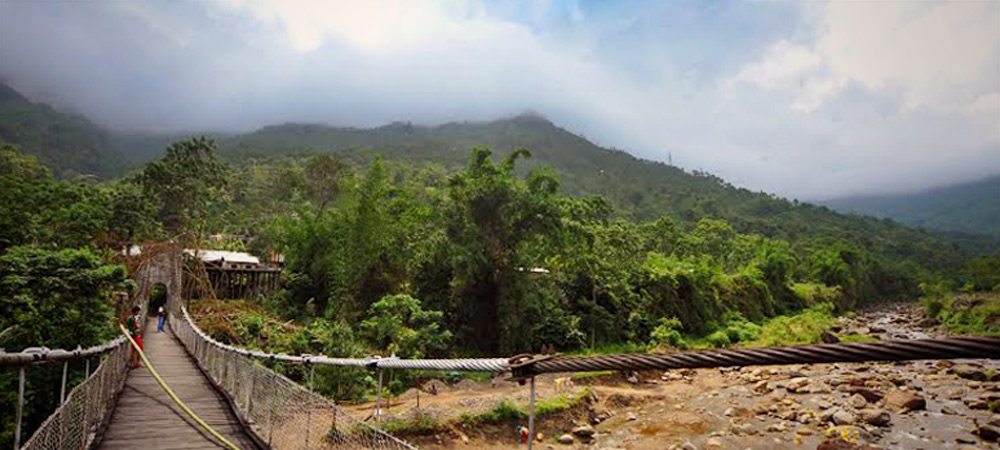 Avongrove, Darjeeling