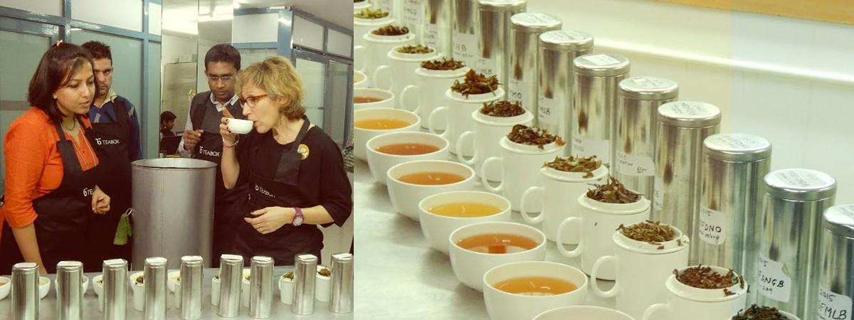 tea tasting in Darjeeling