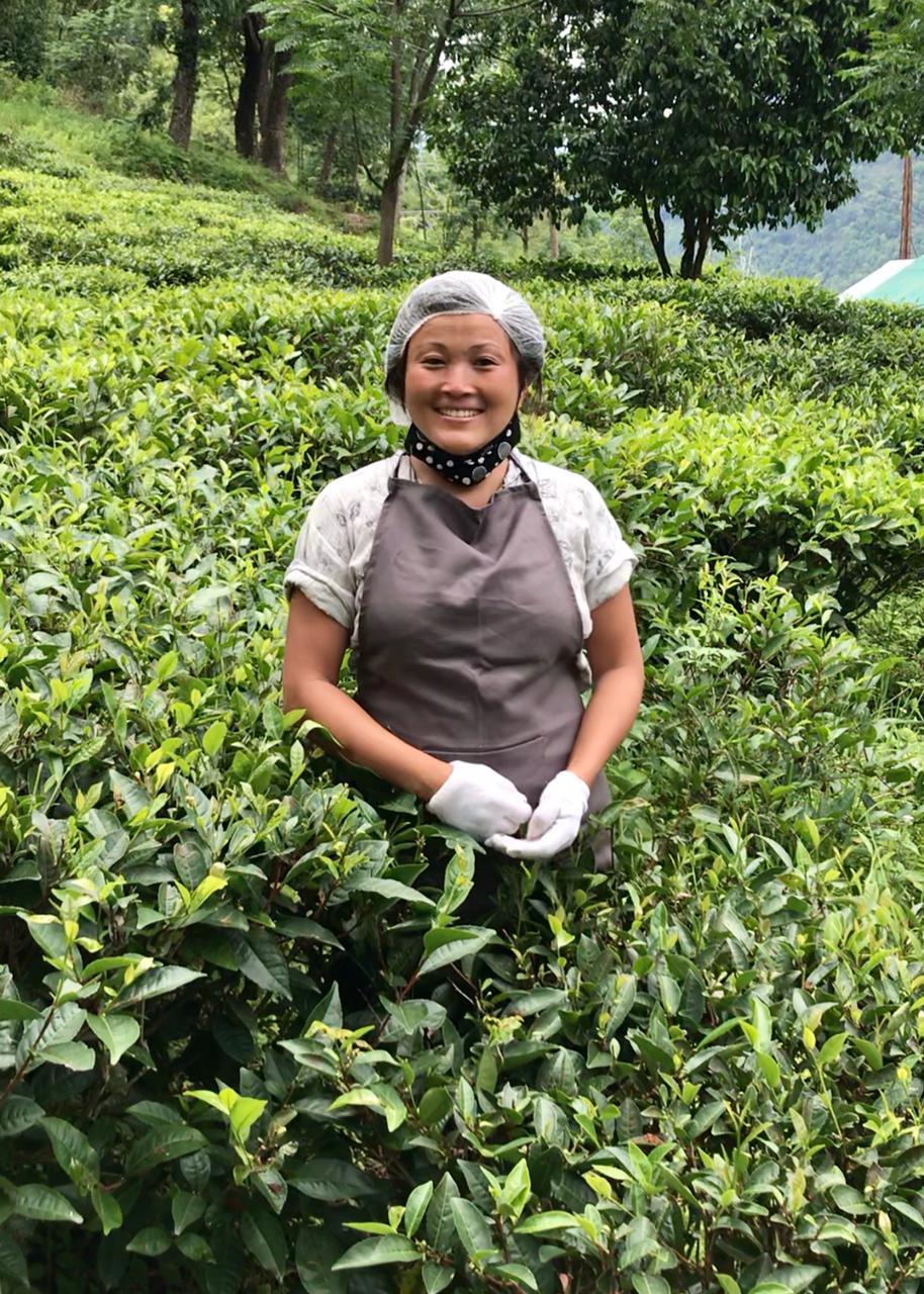 First Glimpse: Kalpana working in Bermiok Tea Garden